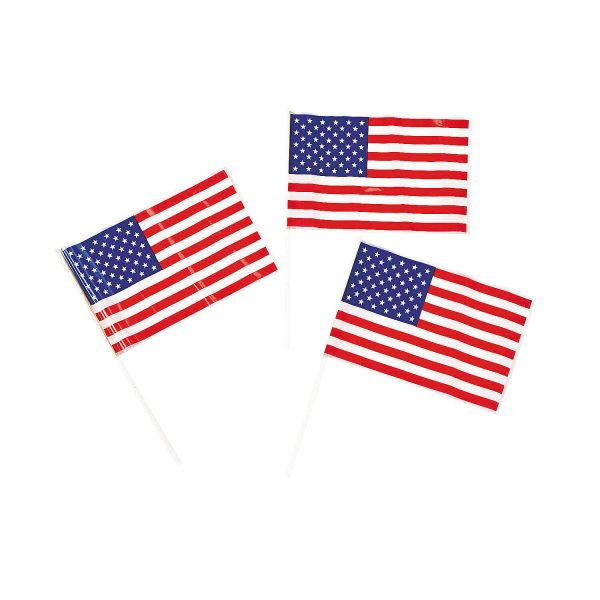 Small Plastic American Flag