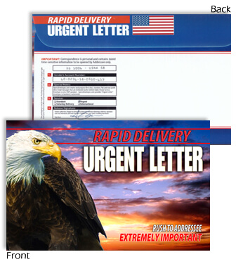 6 X 9 Rapid Delivery URGENT LETTER Eagle with Sunset