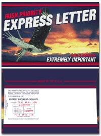 Rush Priority Envelope Blue Sky Hawk 9 x 12