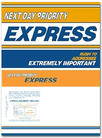 Next Day Priority Express 9 x 12